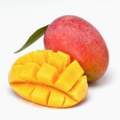 芒果的食譜