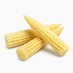 玉米筍的食譜