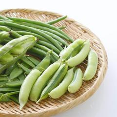 豆類蔬菜的食譜