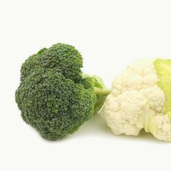 花椰菜的食譜
