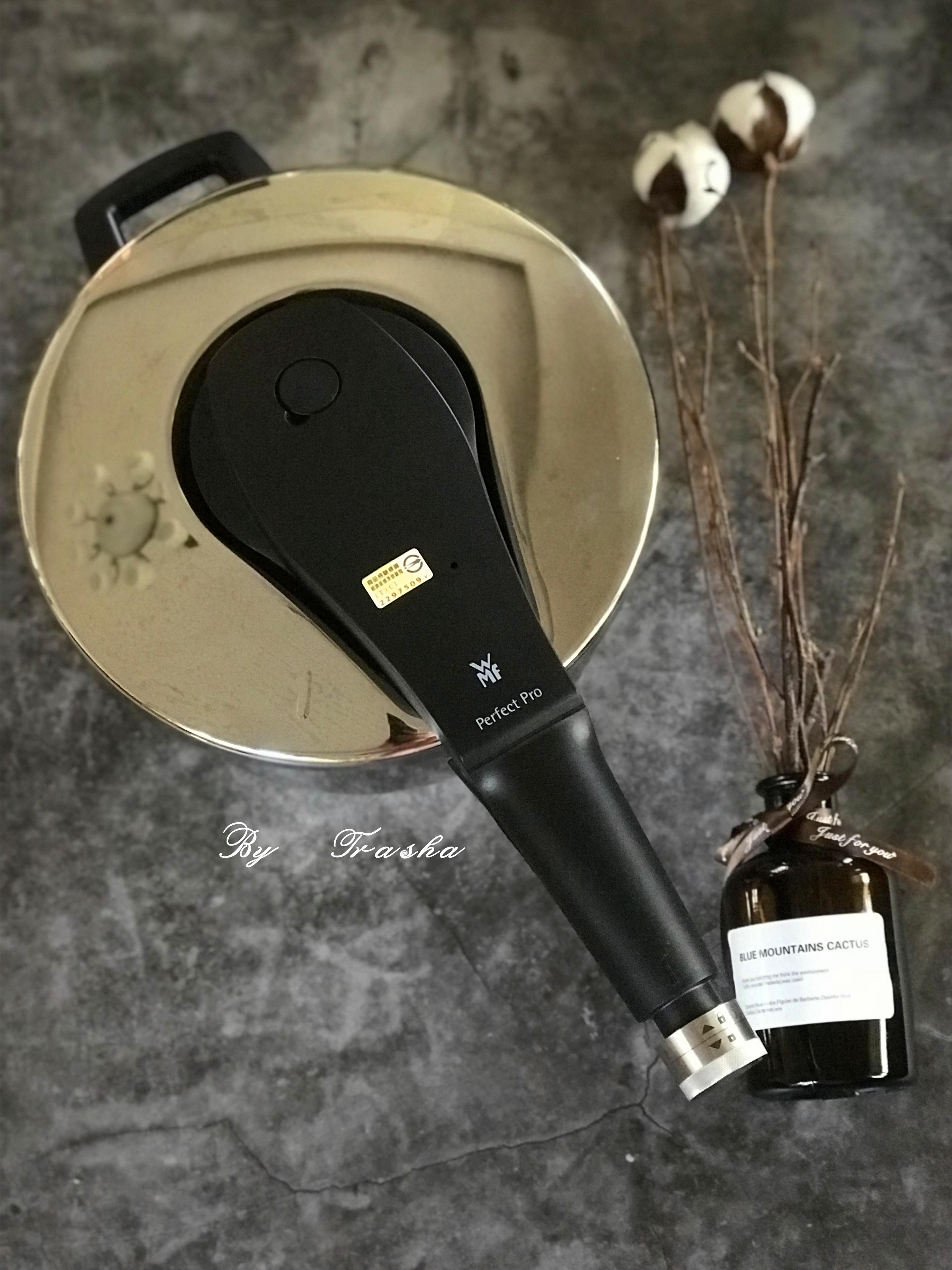 給你美味又省時節能的WMF PRO快力鍋的第 1 張圖片