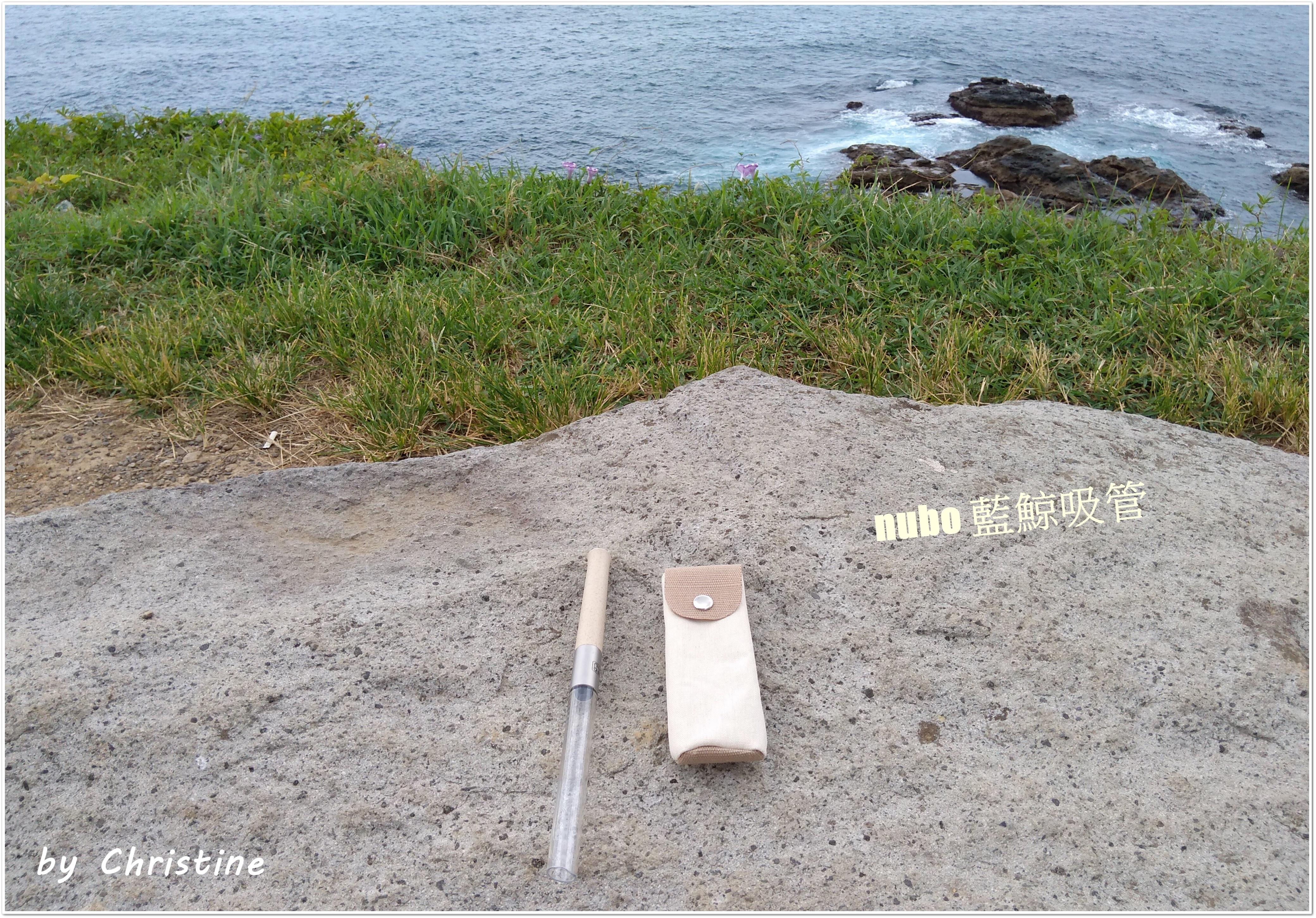 兼具環保與時尚的nubo 藍鯨吸管 送禮自用兩相宜的第 1 張圖片