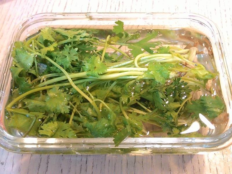 香菜(芫荽)保存方法