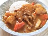 元氣咖哩飯『快鍋就用樂鍋史蒂娜』