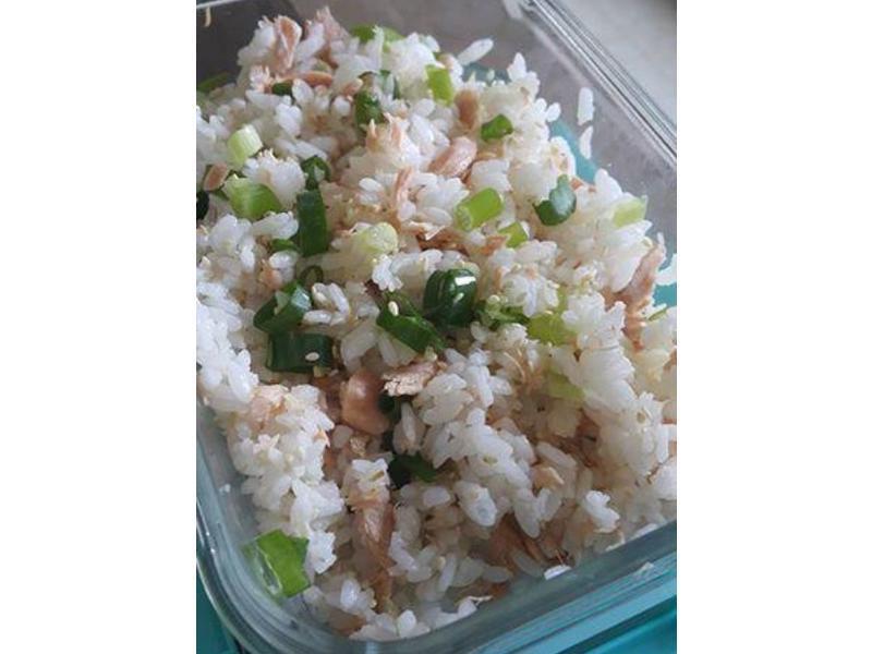 電鍋蒸菜~帶便當 鮭魚飯