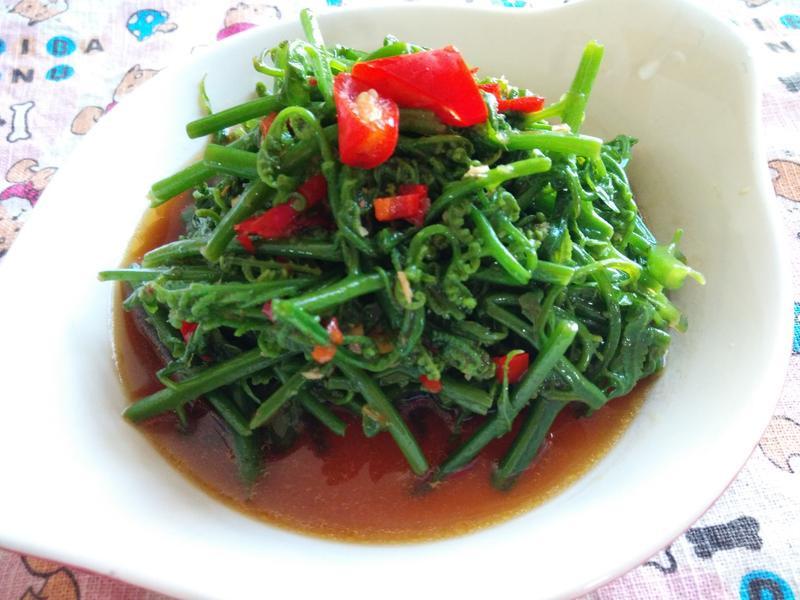 十分鐘上菜─溫沙拉拌野菜-過貓