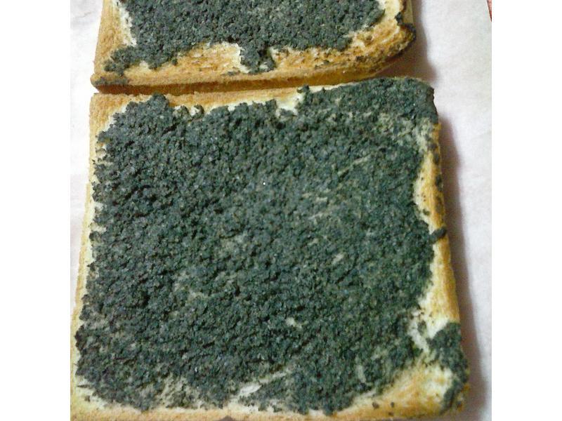 自製黑芝麻土司抹醬