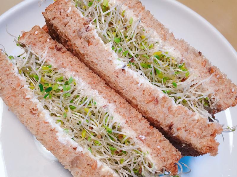 超簡單! 乳酪苜蓿芽三明治