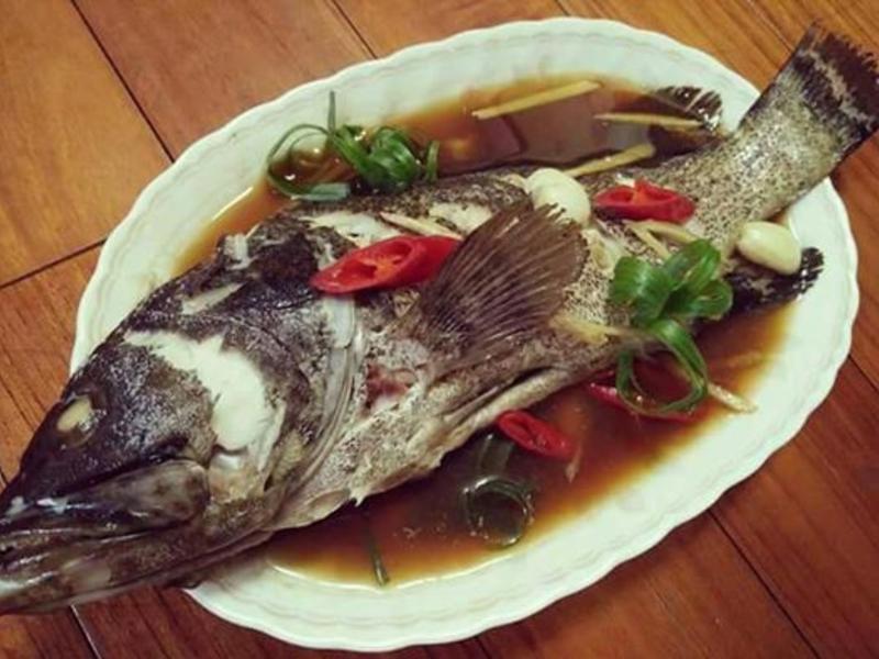 清蒸石斑魚【豆豆愛的料理】【澎湖水產】
