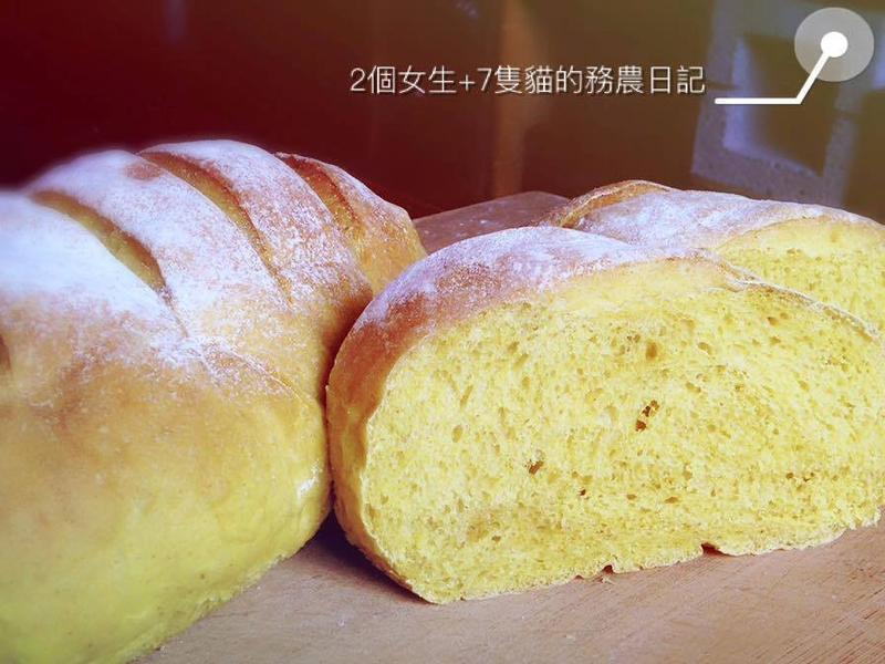 薑黃黑糖紅藜麵包