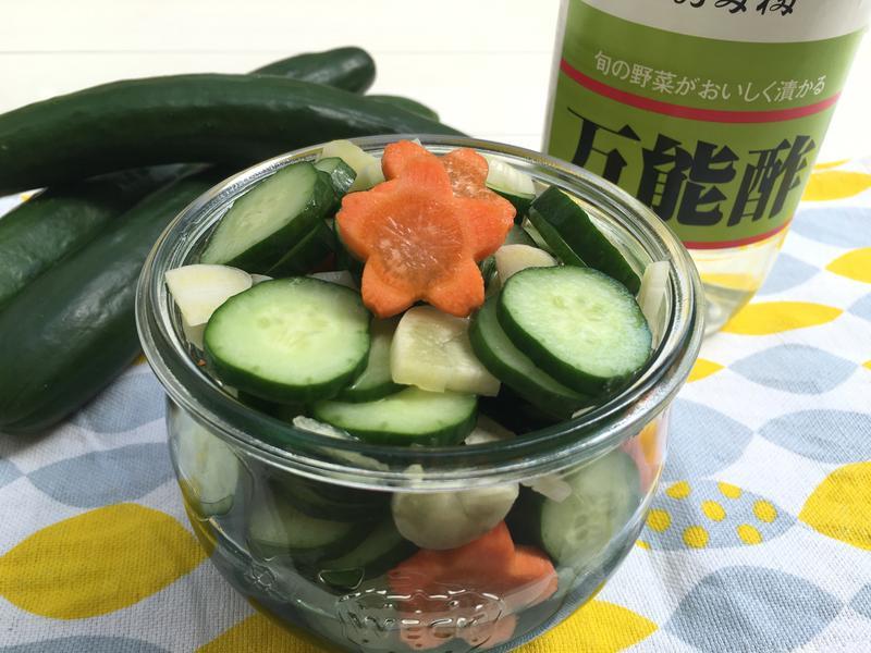 醋拌小黃瓜(冰箱常備菜)