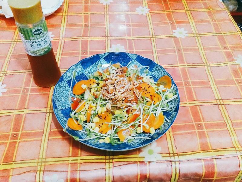 櫻花蝦柚香沙拉[健康廚房]