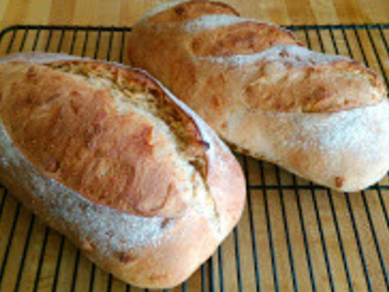 培養酵母麵包