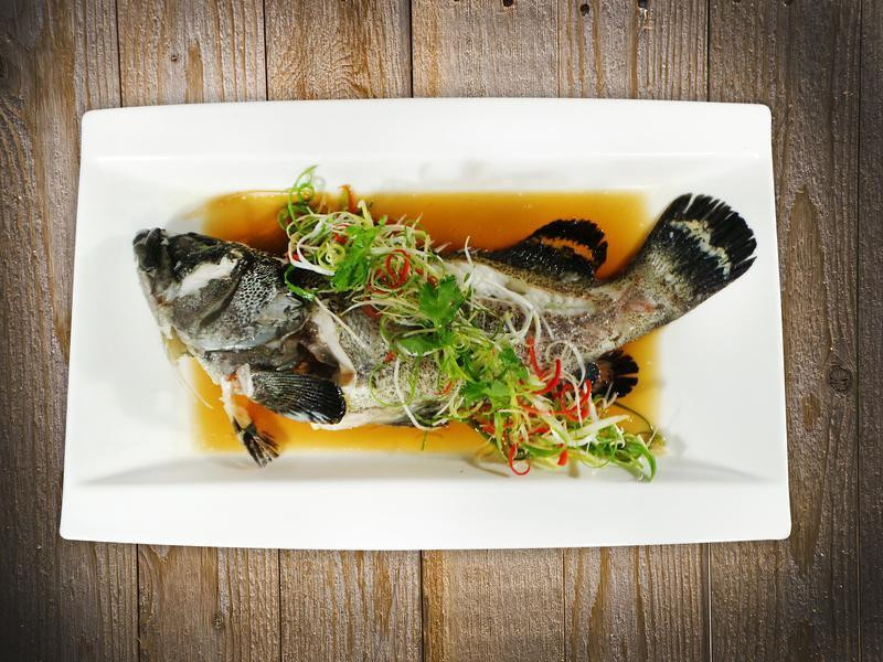 石斑魚清蒸