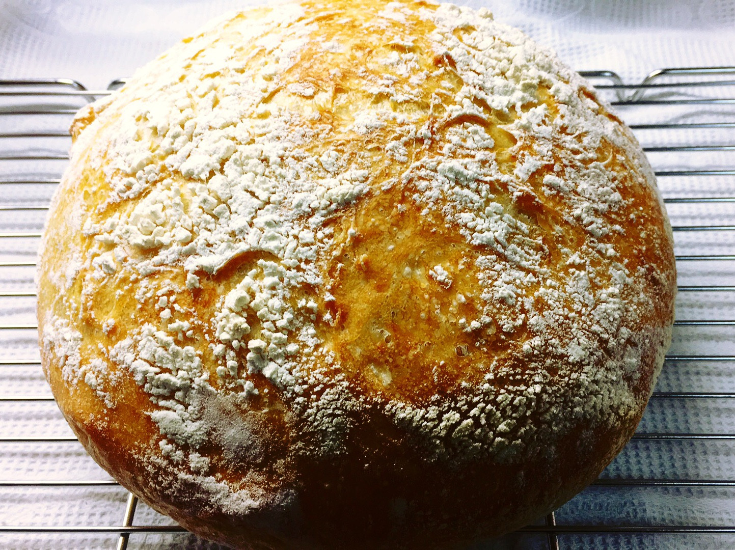 免揉鑄鐵鍋麵包