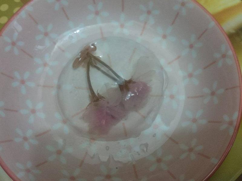 櫻花水信玄餅