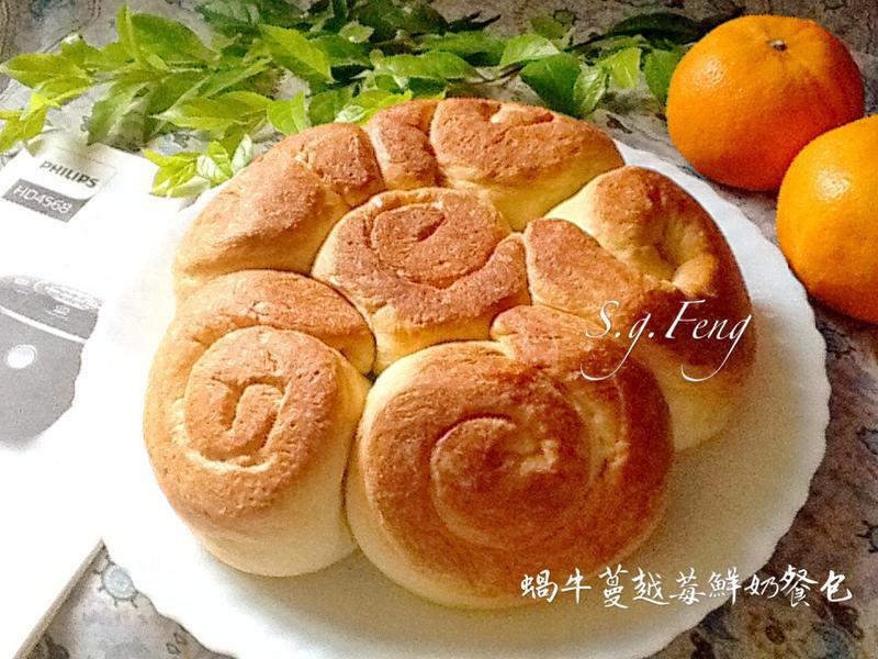 蝸牛蔓越莓鮮奶餐包(電子鍋版)