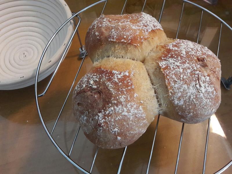 熟麵粉鄉村麵包