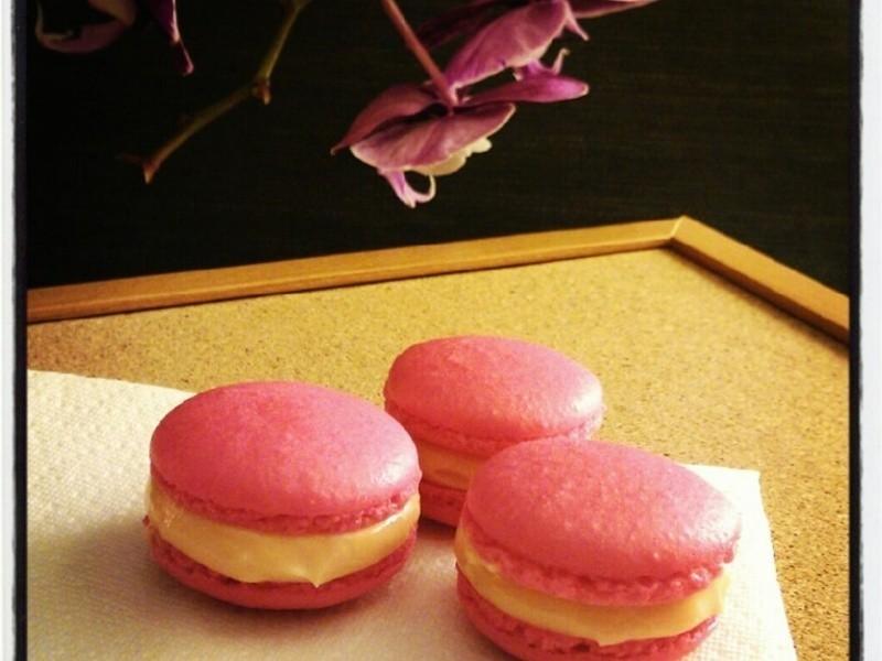 玫瑰馬卡龍 Rose Macaron