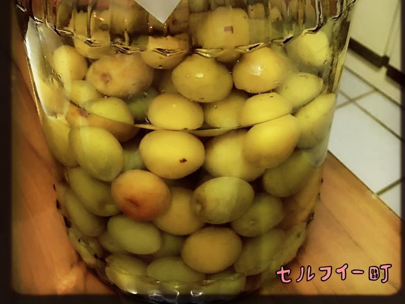 紫蘇梅酒 (38度)