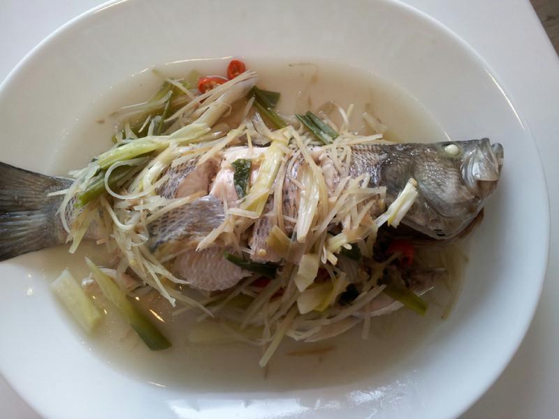 AMC健康烹飪~清蒸鱸魚