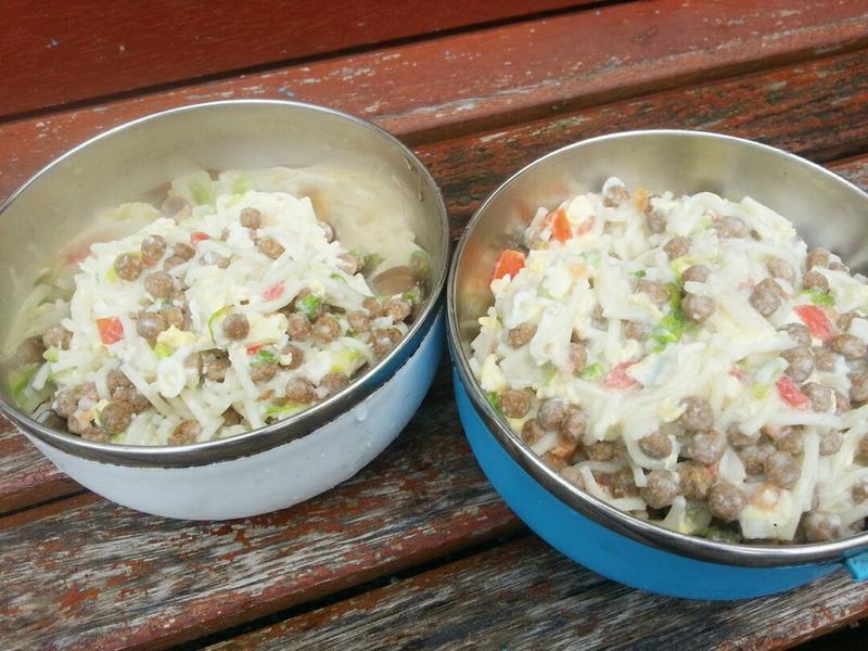 寵物鮮食《酸奶鮮蔬麵》