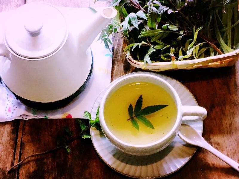 芳香萬壽菊茶