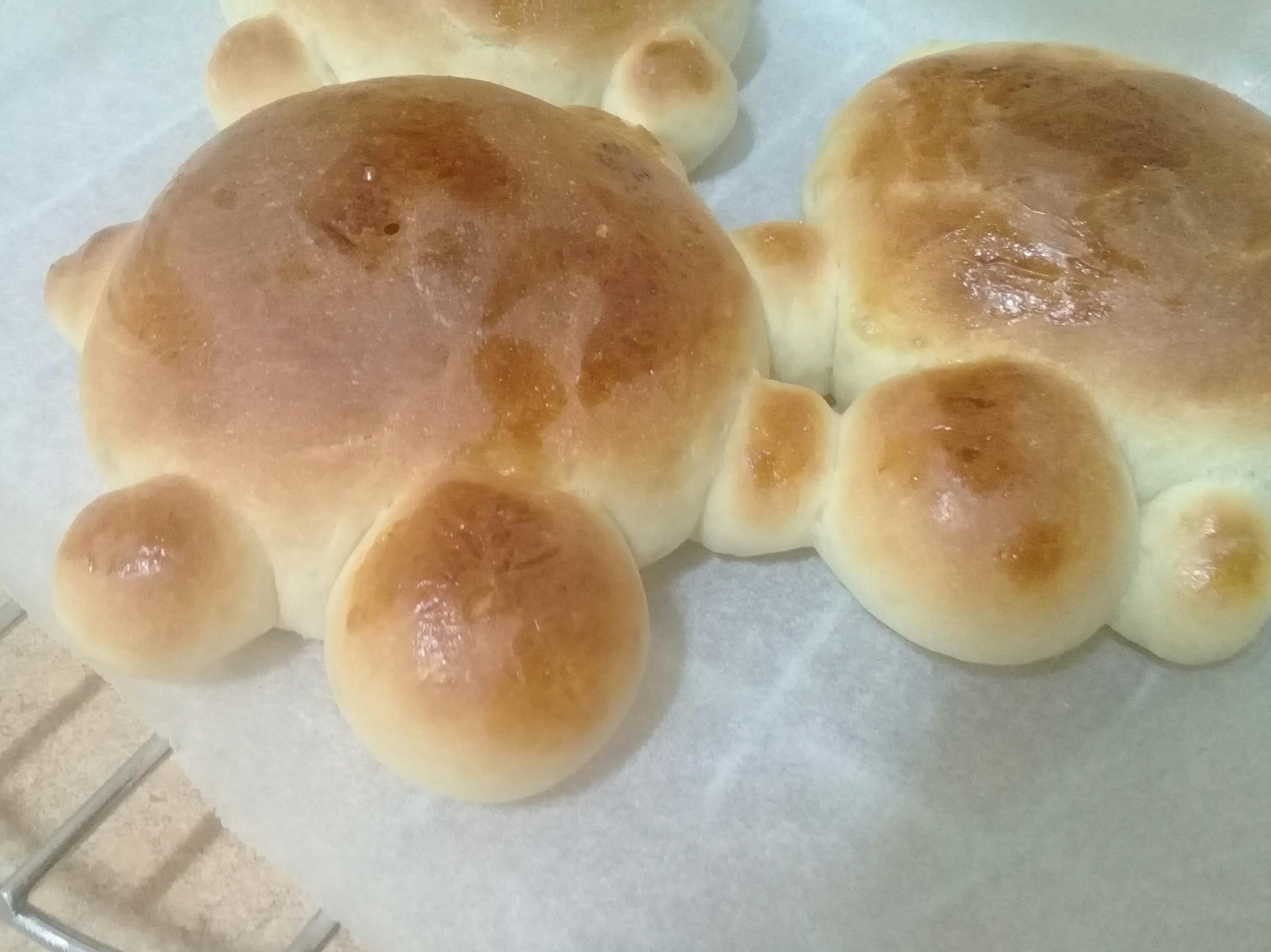 《療癒烏龜造型》蜂蜜奶香餐包