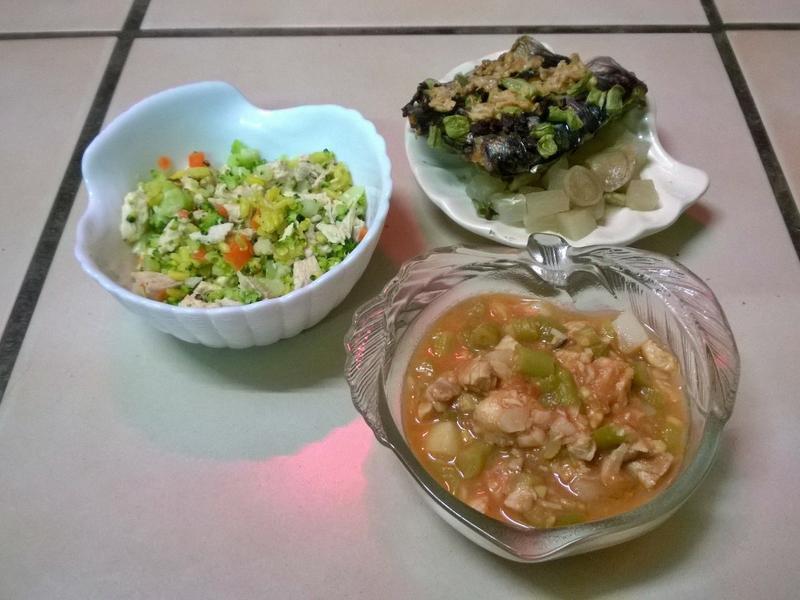 鮮食🐾薑黃飯 烤秋刀魚 番茄濃湯