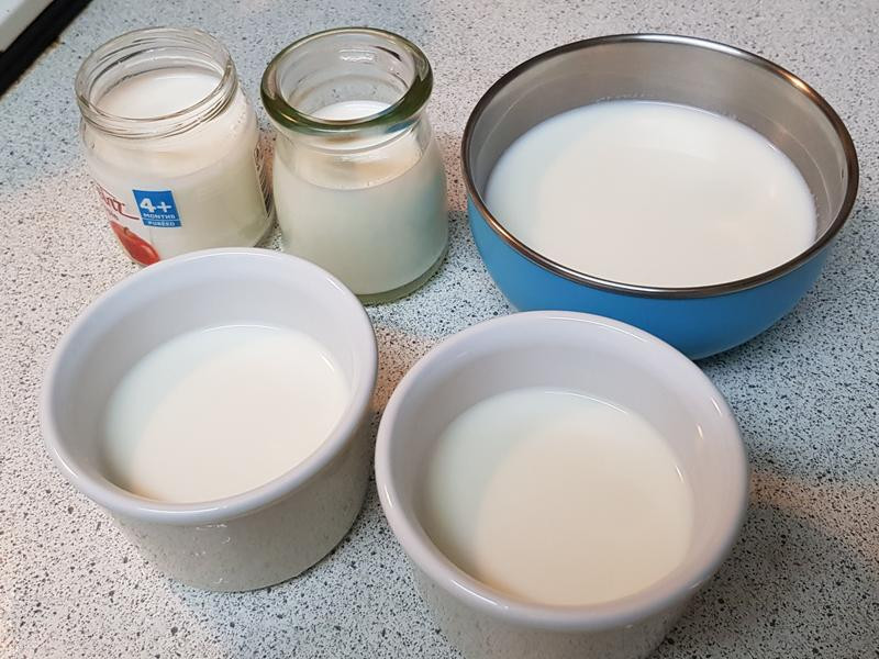 奶粉製作奶酪