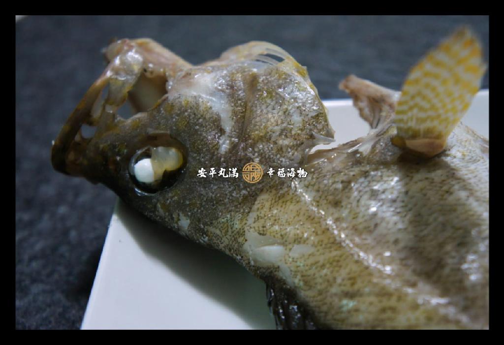 【幸福海物】寶石石斑薑絲清湯