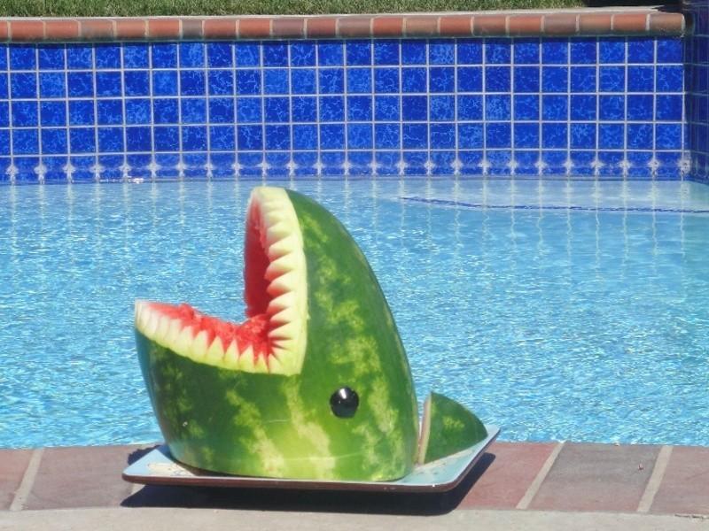 西瓜鯊魚全步驟! Watermelon Shark!