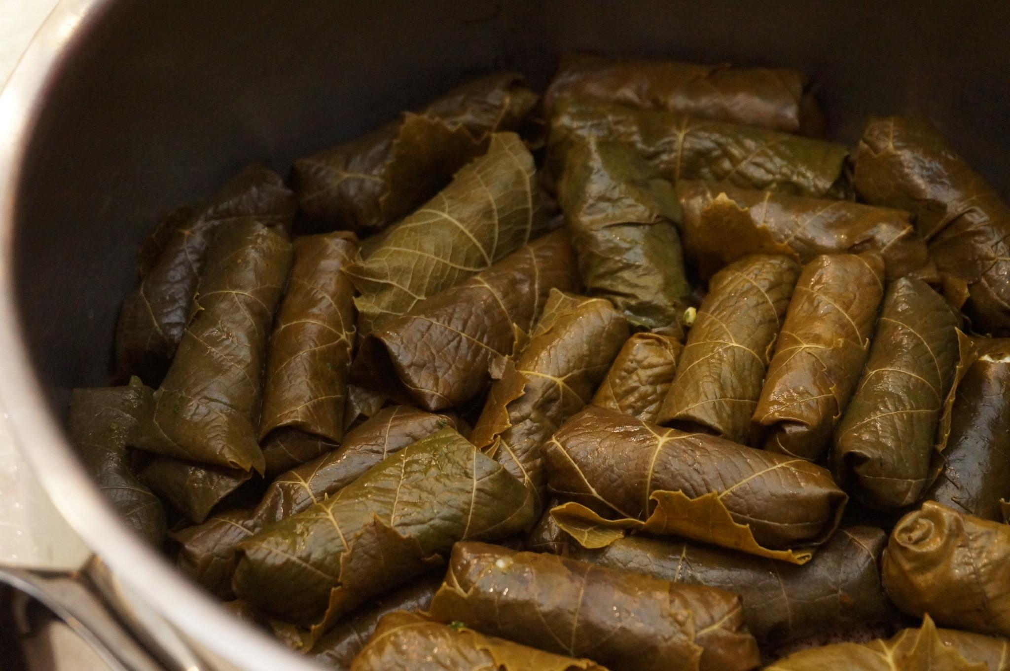 葡萄葉捲-中東家常菜