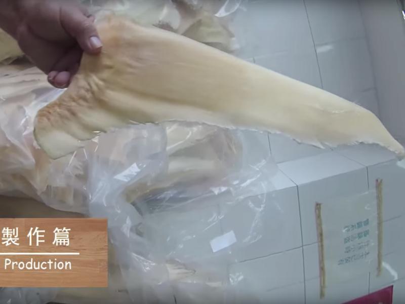 【海味系列】魚翅浸發篇