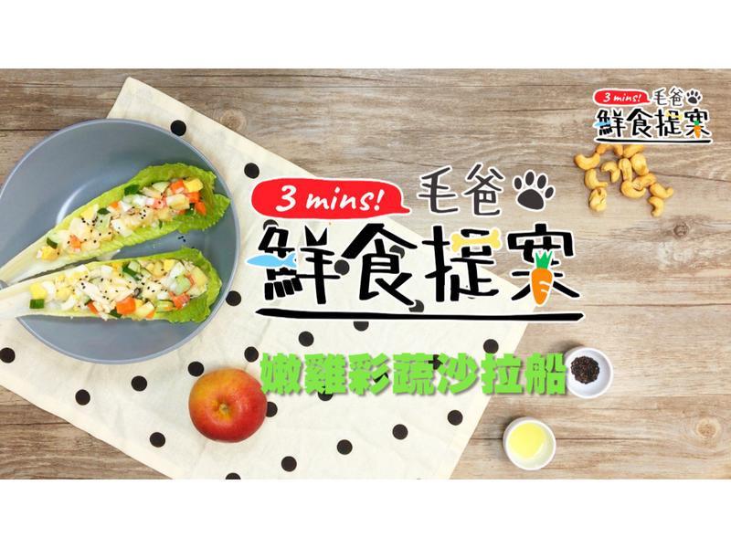 【毛爸鮮食】嫩雞彩蔬沙拉船(寵物料理)