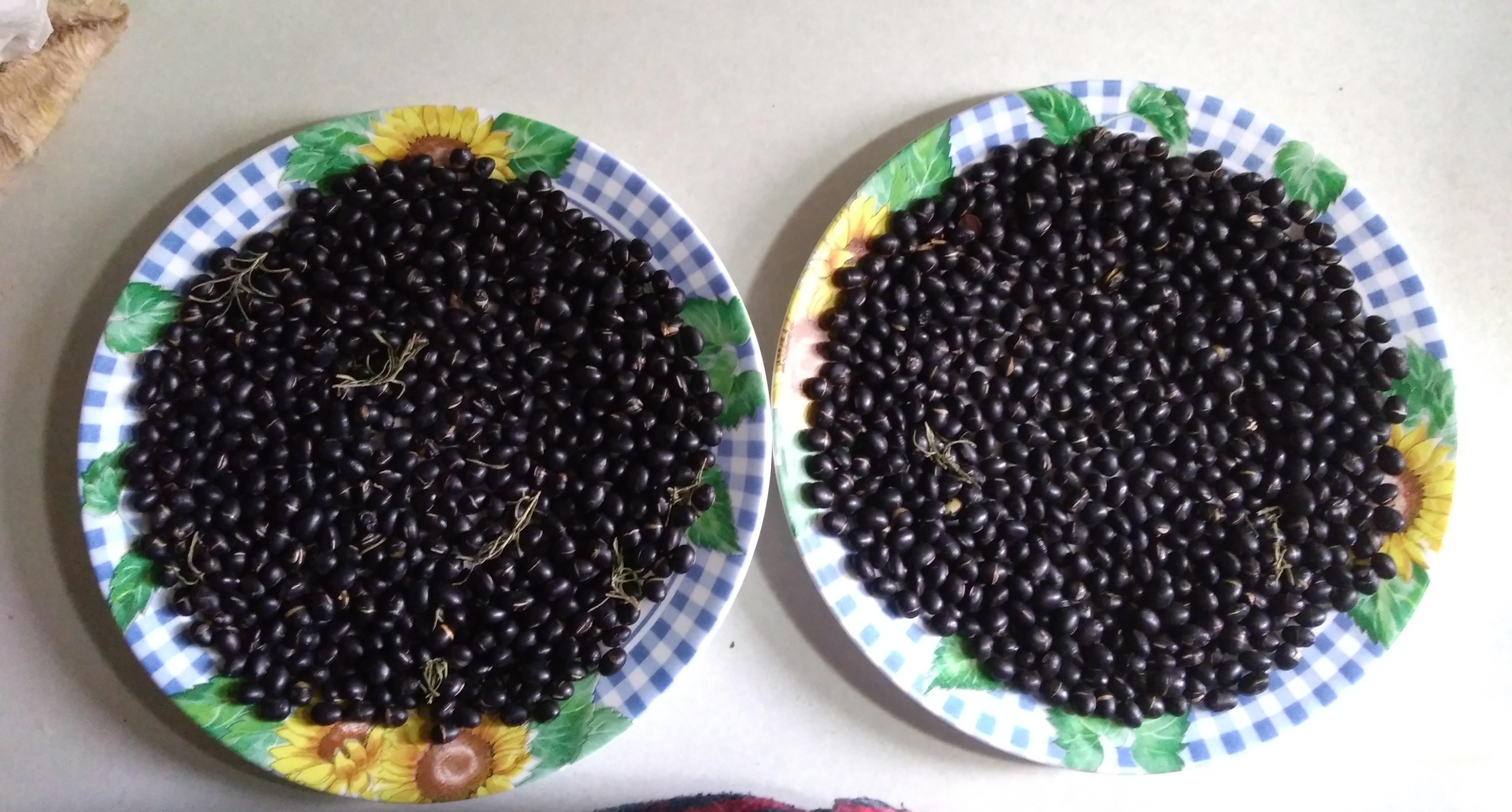 手工炒黑豆&黃耆黑豆水