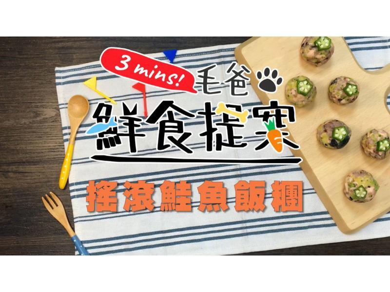 【毛爸鮮食】搖滾鮭魚飯糰 (寵物料理)