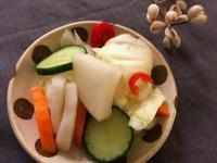 【日式副菜】淺漬野菜 (露營OK)
