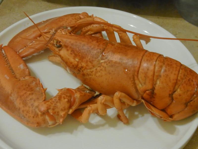 第一次煮龍蝦就上手