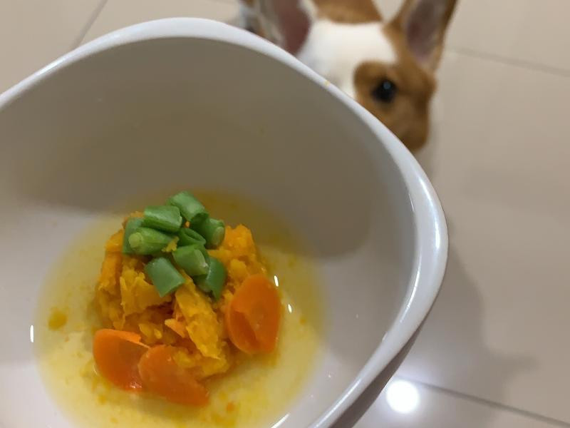 地瓜紅蘿蔔佐四季豆—健康滿分狗點心