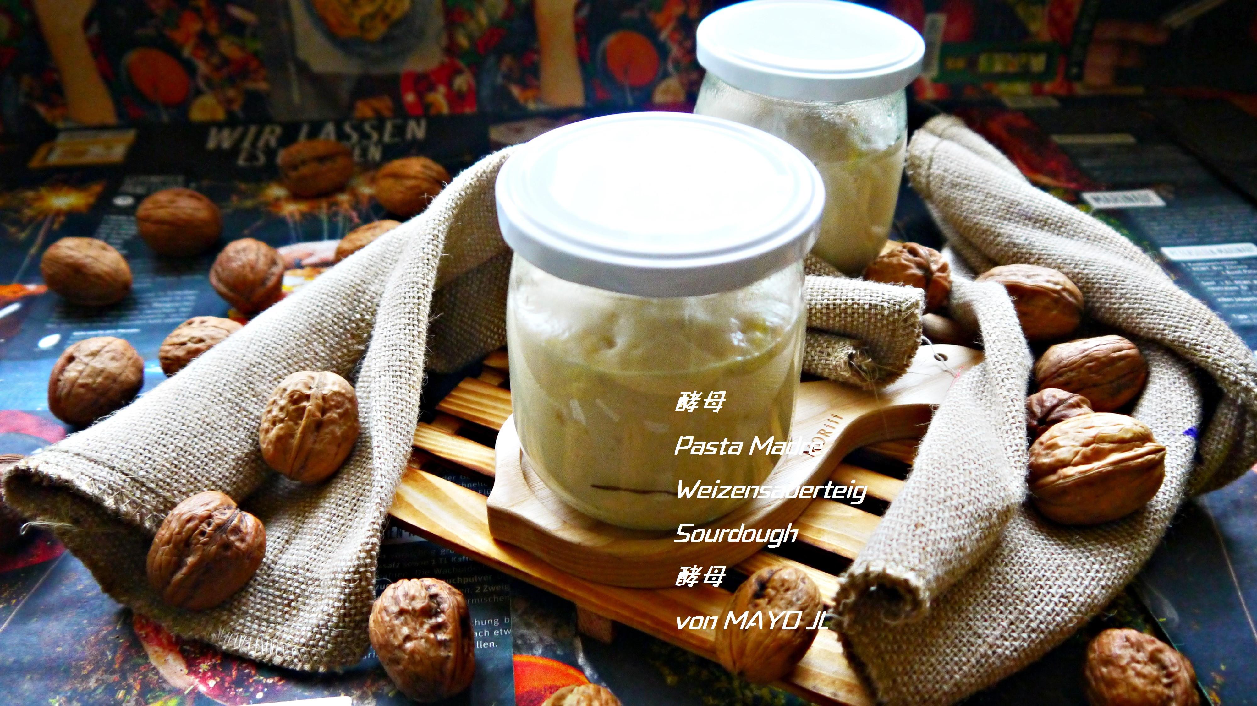 酵母/Pasta Madre