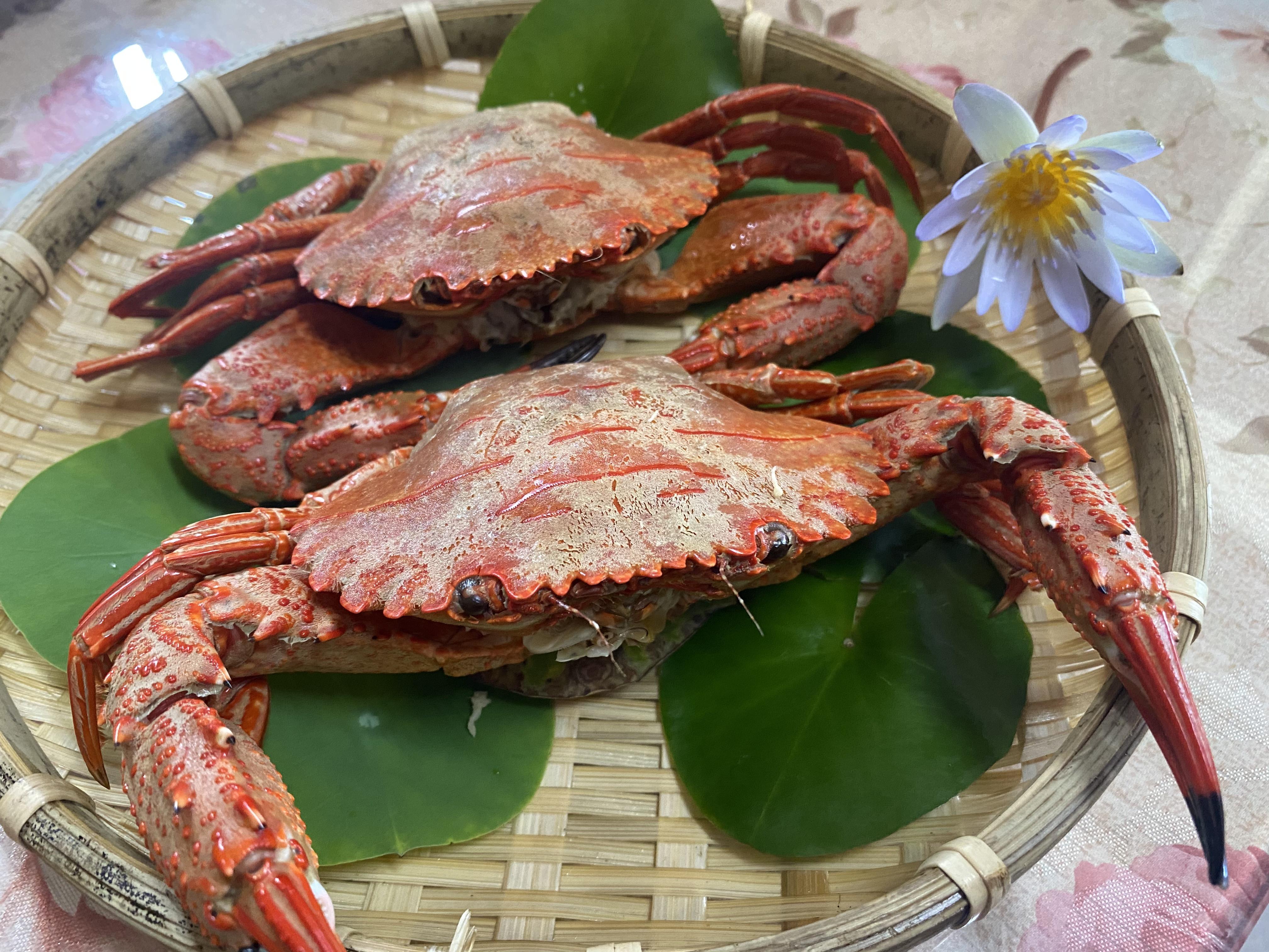 清蒸花雕石蟹