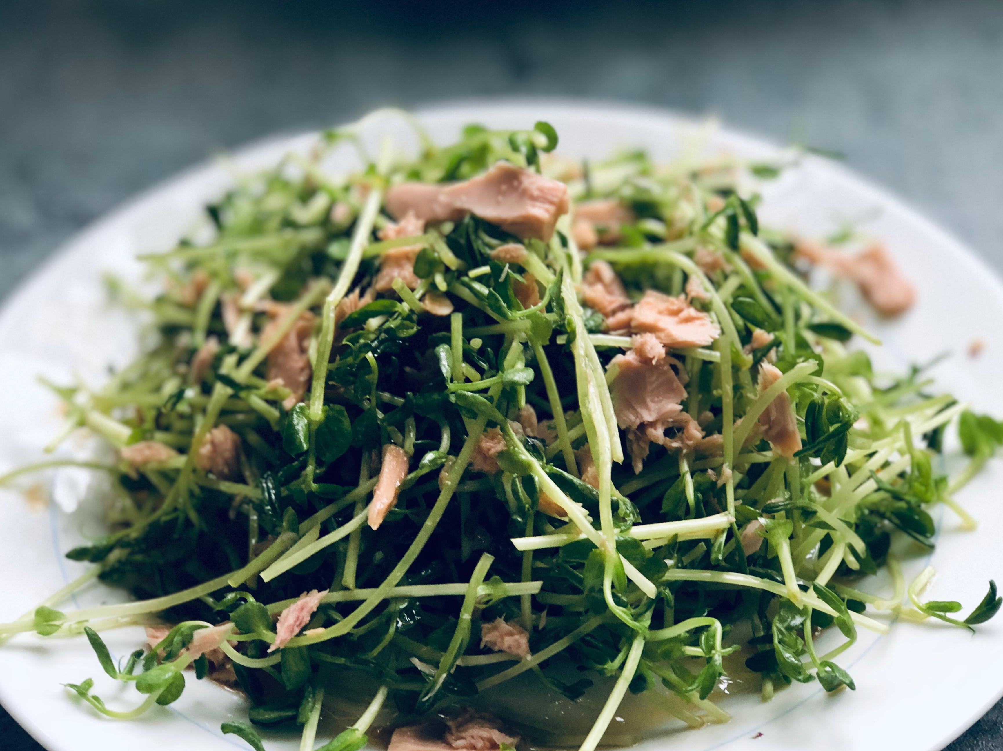 小豆苗鮪魚油醋沙拉