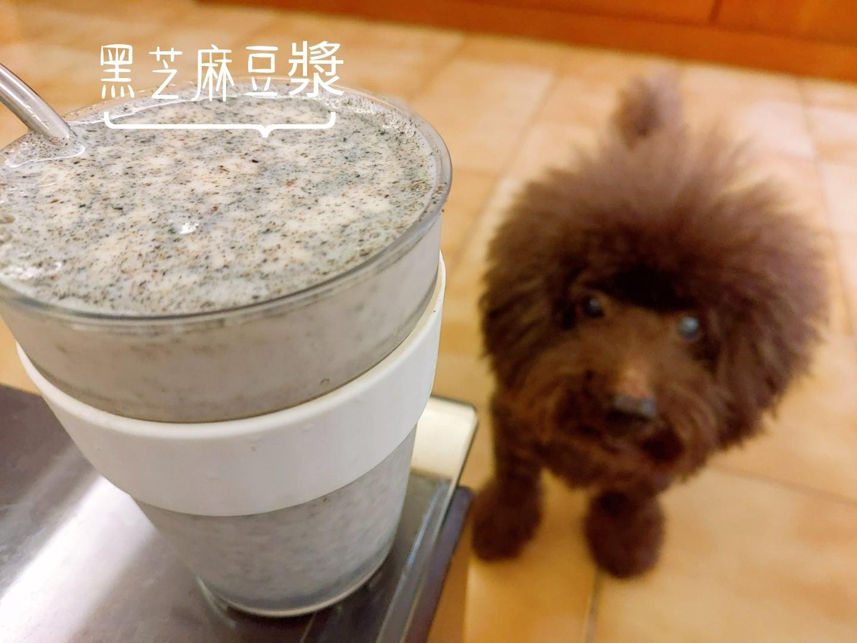 【黑芝麻】芝麻豆漿/芝麻牛奶 圖文熱量表