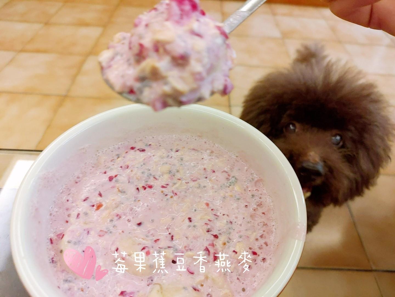 【水果燕麥】莓果蕉🍌豆香燕麥