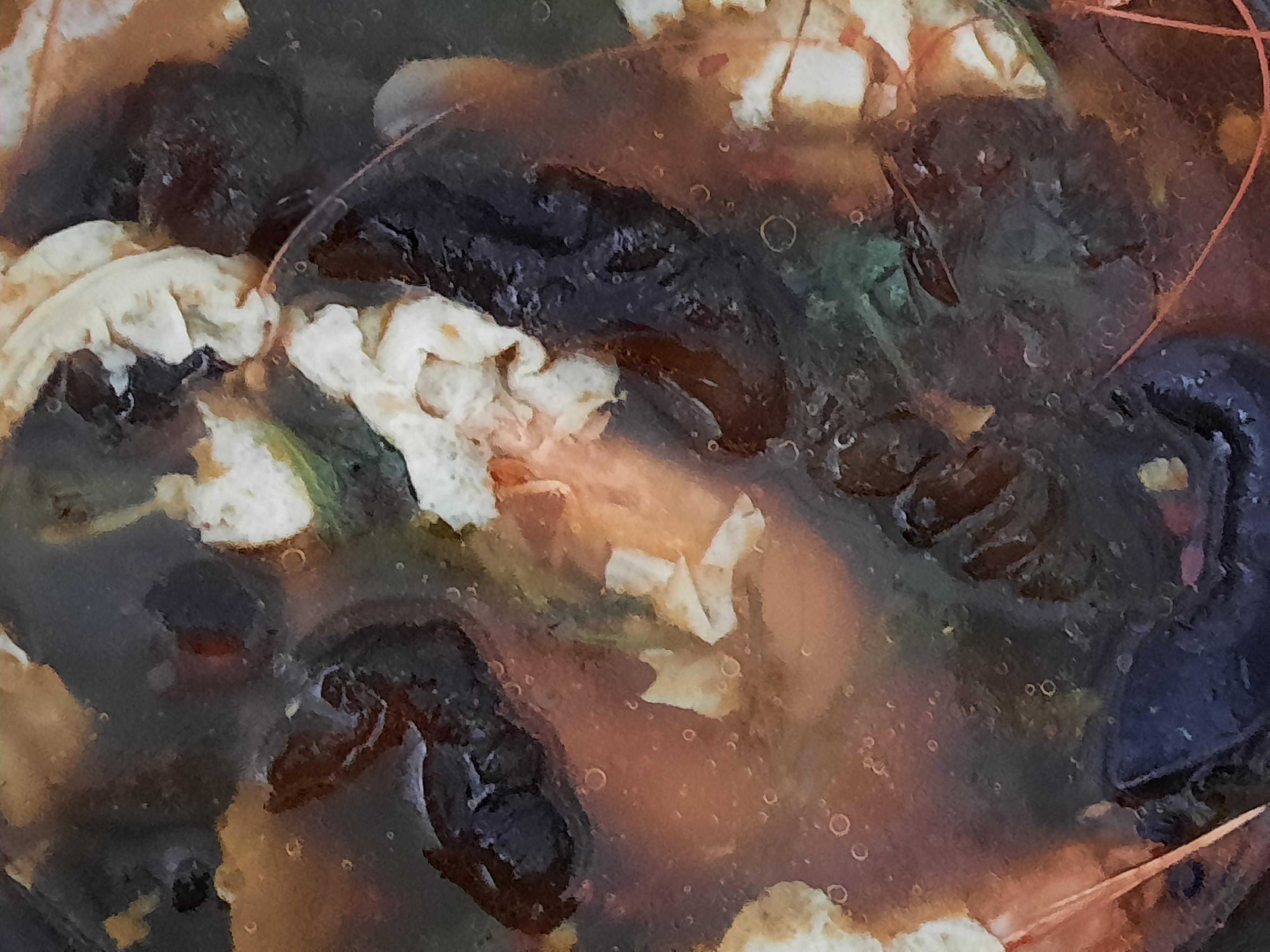 海蔘麻辣鍋