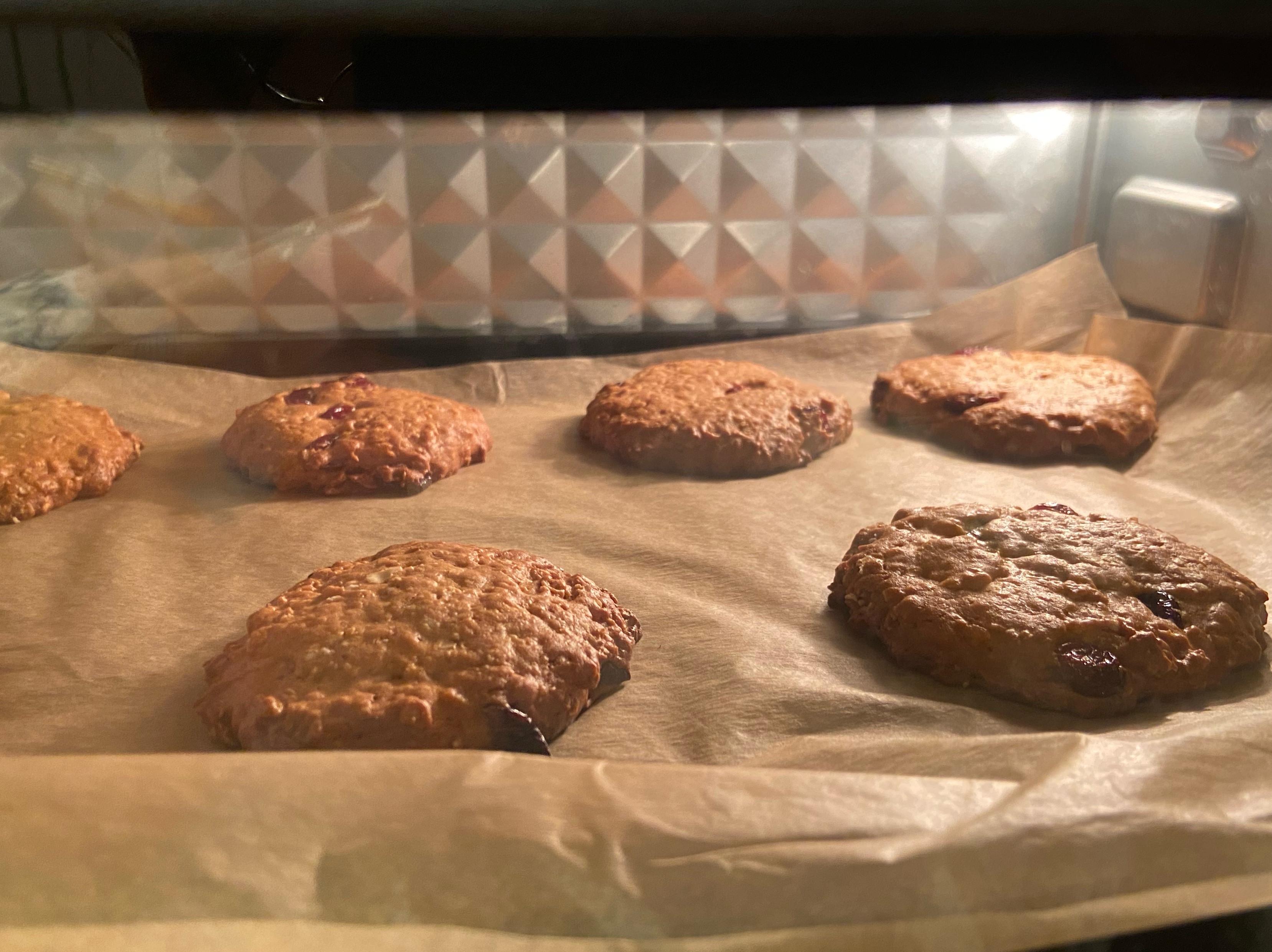 燕麥蔓越莓乾餅乾