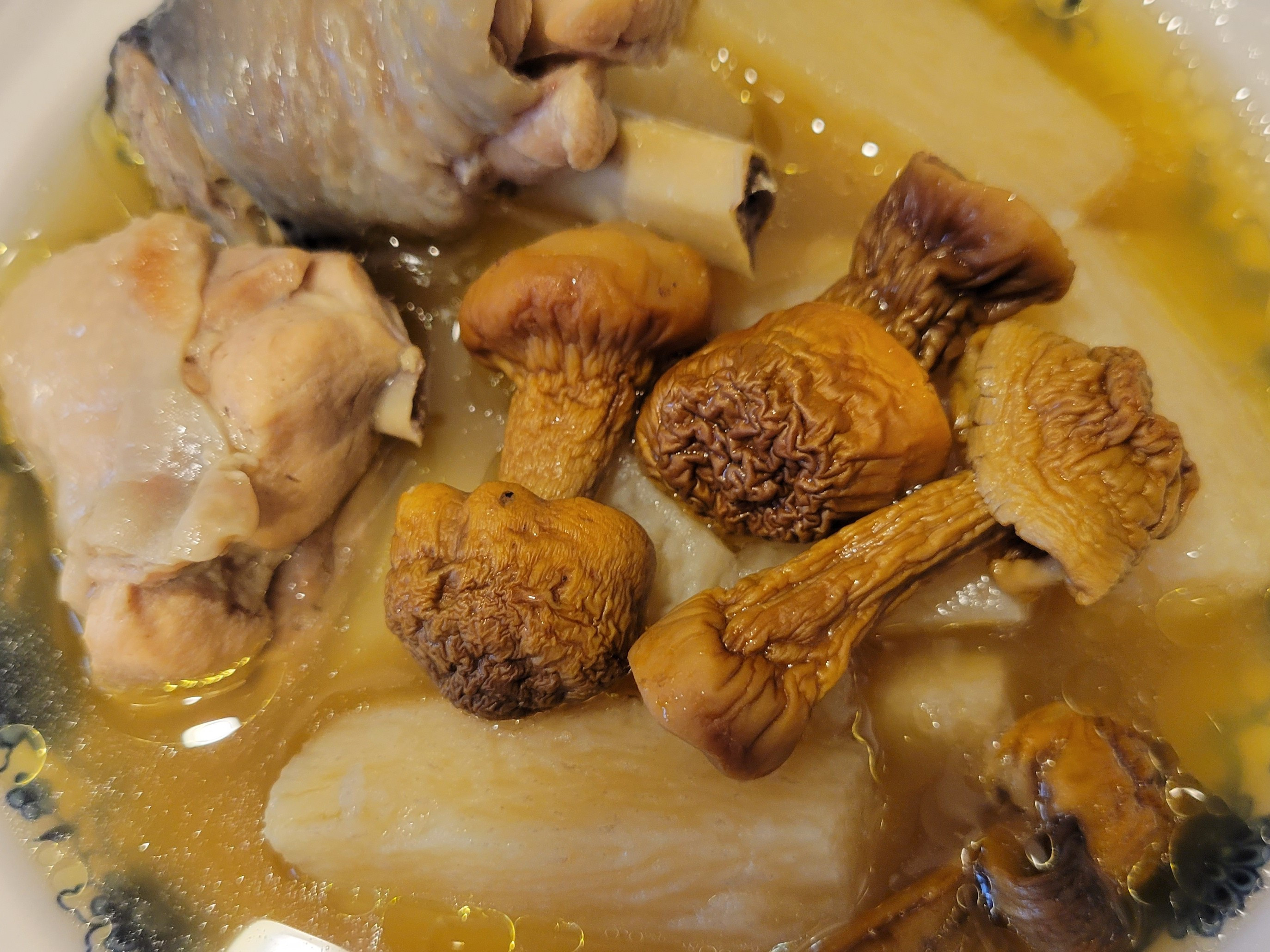 巴西蘑菇山藥雞湯