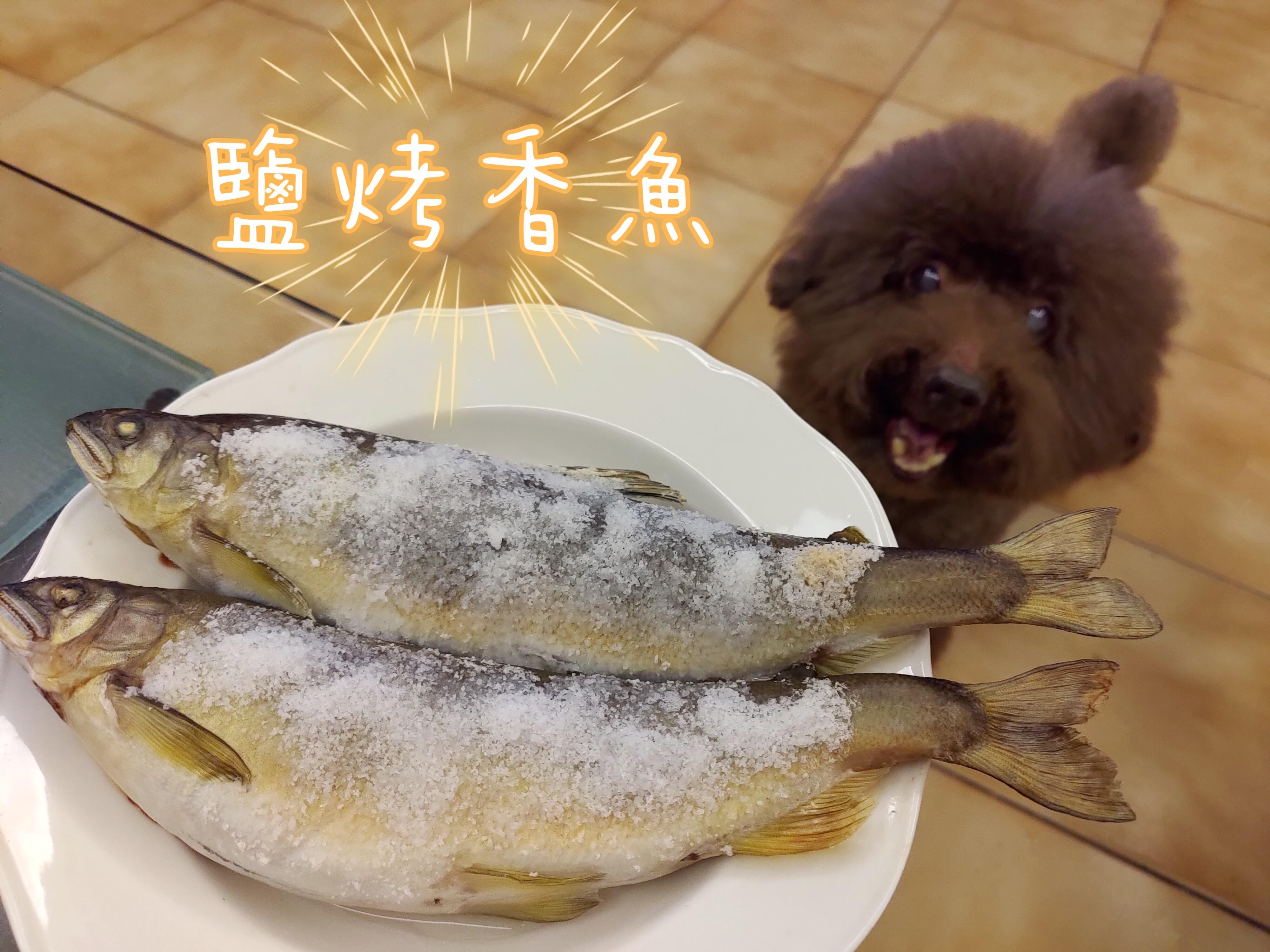 【一秒變大廚】鹽烤香魚𓆞𓆝𓆟 𓆜