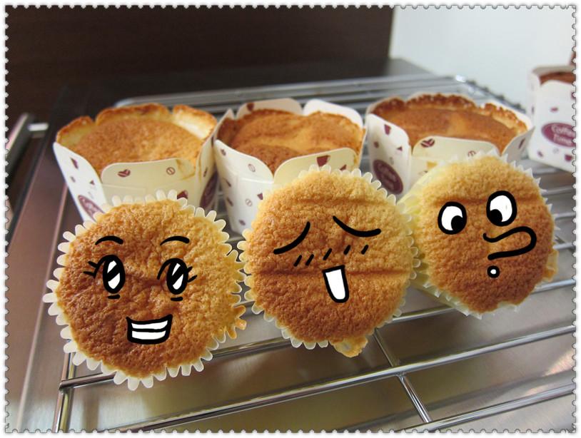 【S&Cm】蜂蜜海綿杯子蛋糕